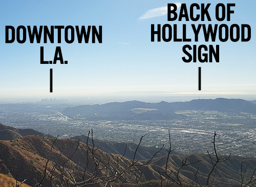 Scotch Wichmann in the Verdugo Mountains, with views of downtown L.A. and the backside of the Hollywood sign